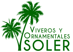 Ornamentales Soler - Wholesale in Elche